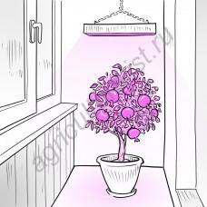 """Обычная светодиодная лампа для растений """"Сириус"""""""