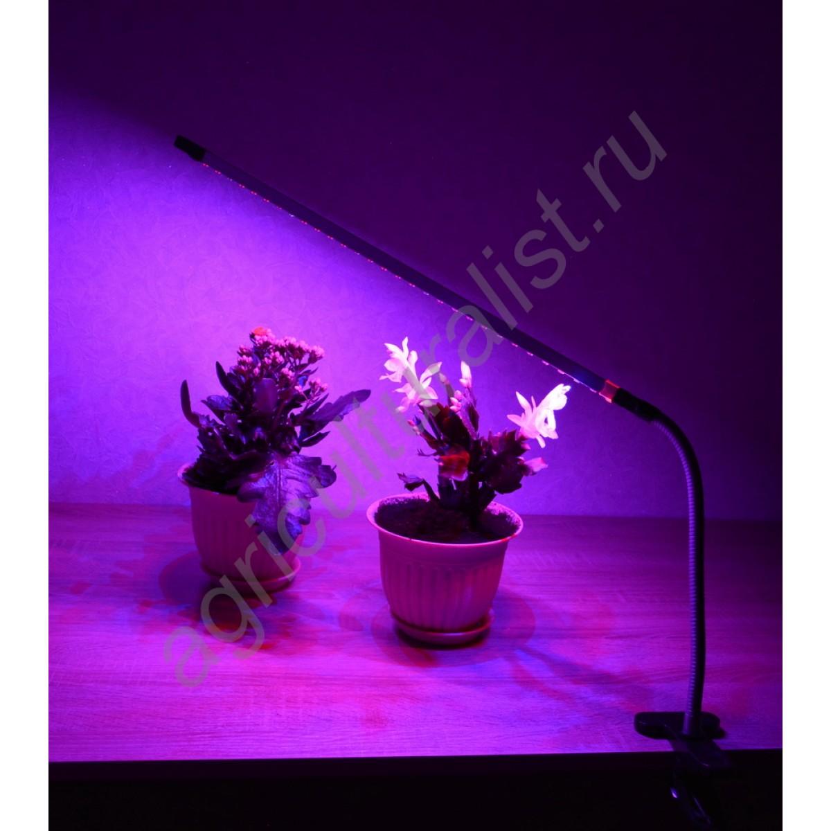 Лампы для досветки рассады 68
