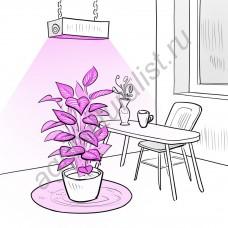 """Фитосветильник светодиодный для небольших теплиц и домашних растений """"Анха"""" 216Вт"""