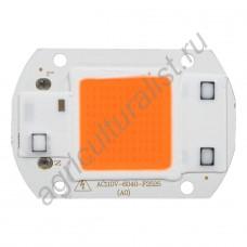 Светодиод бездрайверный полного спектра для фитосветильников мощностью 30Вт