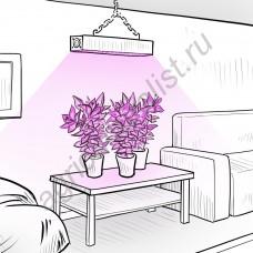 """LED фито панель """"Вега"""" 100Вт - 600Вт для культивирования растений в теплицах и гроубоксах"""